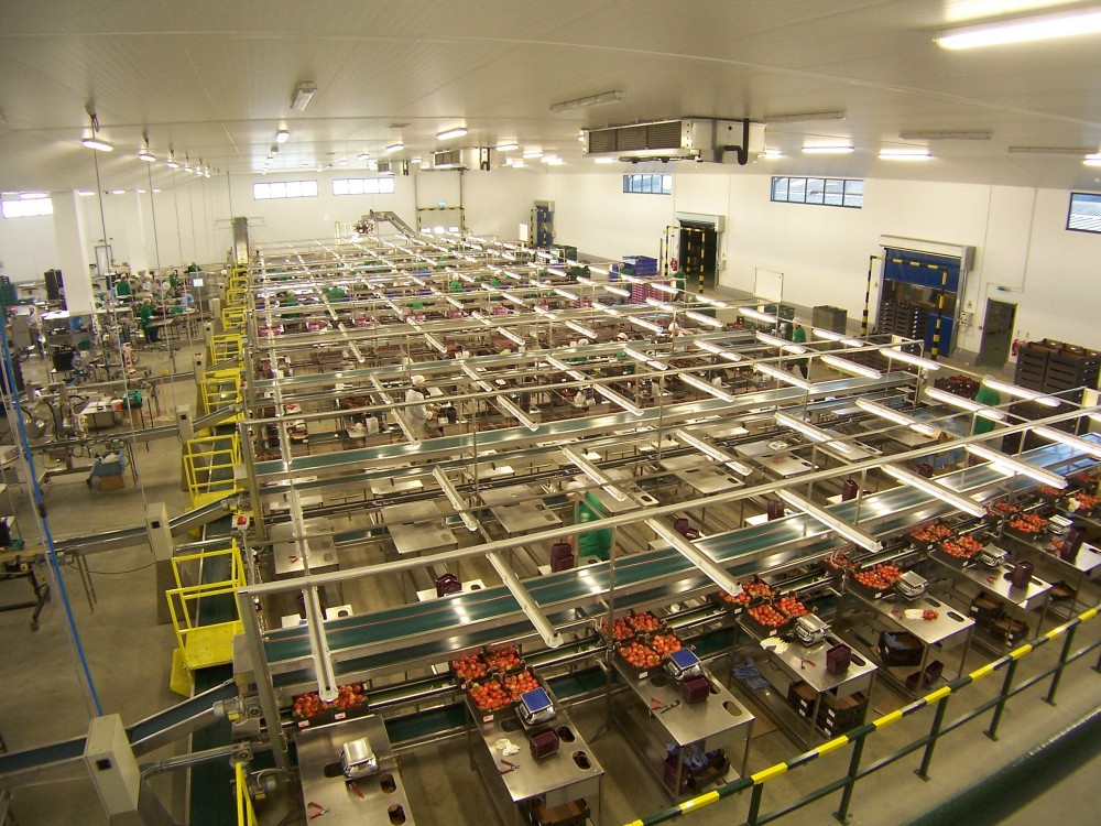 Conveyor production line | Industrial Fit-outs